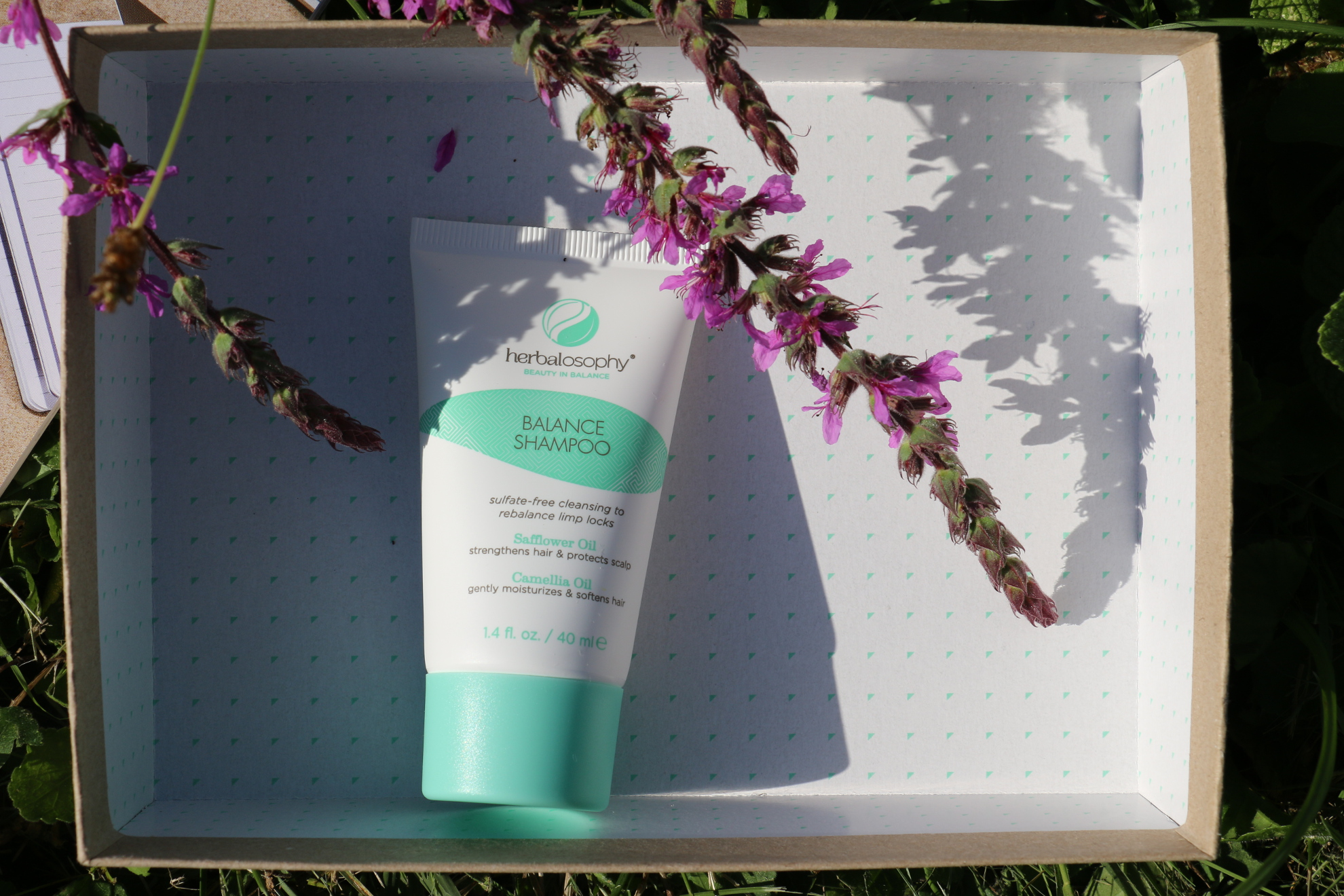 Birchbox d'Août 2015 : Back to cool !
